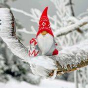 Quelles activités faire à Noël en Provence ?